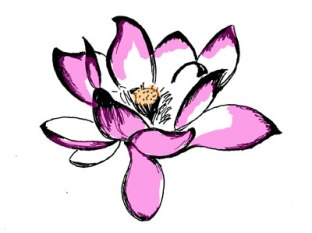 Lotus Image from Dribble.com